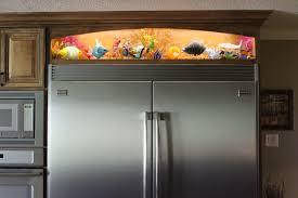 Refrigerator Light Out Blown Glass Aquarium Above Refrigerator A Simple Strip Of