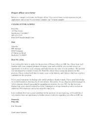 Sample Resume Information Technology Director Of Information