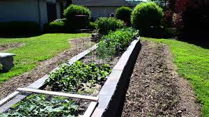 successful raised bed garden cement block construction