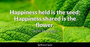 Quotes About Flowers Blooming Gorgeous Flower Quotes BrainyQuote