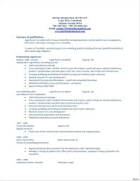 Template To Write A Career Summary On Your Resume Professional