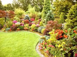 Small Picture Perennial Garden Ideas For Full Sun Gardening Plans Landing Flower