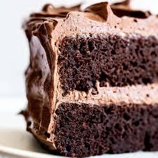 Best Chocolate Cake | Handle the Heat