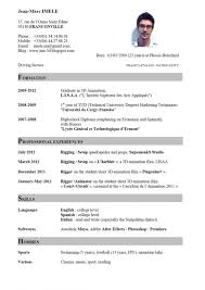 C V In Englich Professional Resume Template 2018