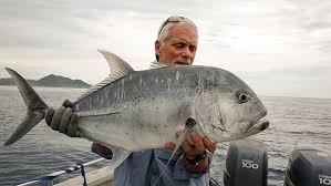 amazon river catfish. Interesting Catfish In Amazon River Catfish E