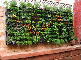 wall herb garden vertical herb garden indoor wall herb garden diy