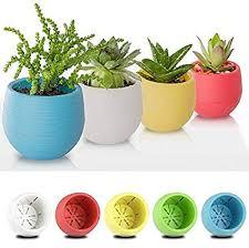 Nursery Container Sizes Chart Amazon Com 1pc Creative Plastic Gardening Mini Flower Pots