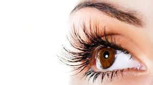 Pics Of Eyes Winter Blues Likely To Be More In People With Dark Coloured Eyes