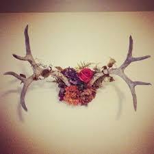antler wall art fl antler deer