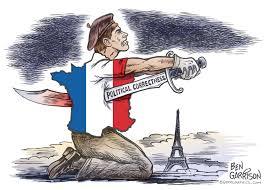 political correctness essay has political correctness gone too far  rogue cartoonist suicide by political correctness