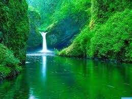 Beautiful Nature Wallpaper HD Download ...