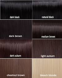 Medium Brown Hair Colour Chart Amazing Dark Brown Hair Color Chart 12 Black Hair Color