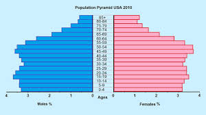 Diagram Of A Pyramid How To Make A Population Pyramid