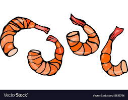 cooked shrimp clip art. Simple Clip Set Of Cooked Shrimps Seafood Prawn Vector Image With Cooked Shrimp Clip Art A