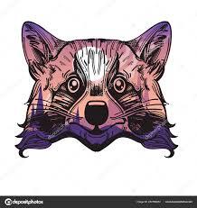 глава енот ночной пейзаж лес векторные иллюстрации печати футболках
