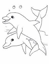 Kleurennu Twee Lieve Dolfijnen Kleurplaten