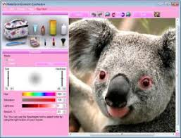 enlarge makeup instrument screenshot