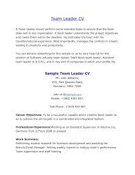 Resume Examples Resume Sample For Warehouse Team Leader Luxury Team