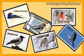 Зимующие птицы Зимующие птицы Задания для детей