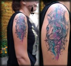 Tetování Kočka Sfinga Ve Vodovce Watercolour Sphynx Tattoo