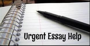Help With Essay Urgent Essay Help Essay Writing Service Coursework Help