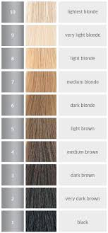 Wella Charm Toner Chart 32 Clean Wella Color Charm Toner Color Chart