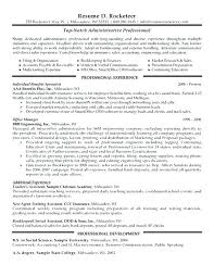 Ideas Of Profile For Resume Example Nice Professional Profile For