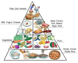 food pyramid 2015 in spanish. Unique 2015 The Food Pyramid In Spanish And 2015 Fashions Blog