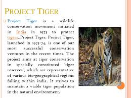 project tiger project tigerpresentation made by rohan d gandhi 2 project tiger project tiger is a wildlife