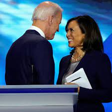 Joe Biden needs more than virtue to win. He will have to pick an exciting  vice-president | Joe Biden