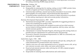 Best Online Resume Writing Service Resume Template