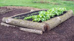 Small Picture 5 Raised Garden Beds You Can Build In Half a Day Rodales