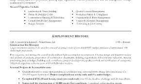 Examples Of Project Management Resumes Resume Template
