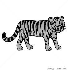 トラ 虎 とら 吠えるのイラスト素材 Pixta