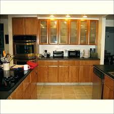 glass cabinet door inserts kitchen seeded full size of doors d glass cabinet door