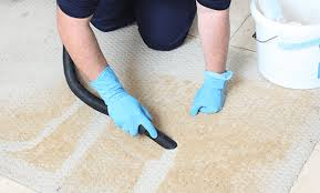 carpet cleaning. cleaner vacuuming carpet cleaning powder