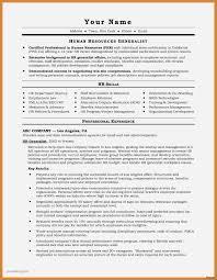 30 Lovely Resume Sample Of Engineering Manager Jonahfeingold Com