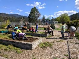 the grant money has allowed us to get our school garden back to operational status we used the money to install timer operated irrigation systems so