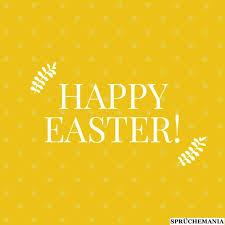 25 Sprüche Der Osterwünsche In Englisch Mit übersetzung Sprüche