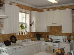 Kitchen Cabinet Catalogue Perfect White For Kitchen Cabinets Cliff Kitchen
