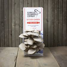 Kitchen Garden Mushrooms Espresso Mushroom Company Grow Your Own Kitchen Garden Espresso