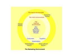 Apple Company External and Internal Environments Essay   Academic