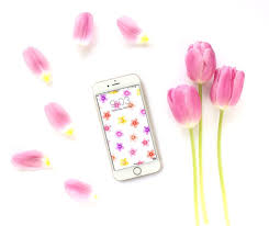 Free Spring 24 Free Spring Wallpapers Backgrounds Lines Across