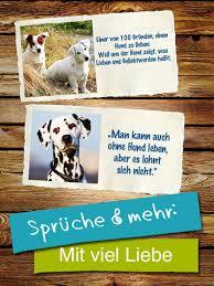 Hunde Tierisch Süße Grüße Zitate Für Hundefreunde Bei Mario