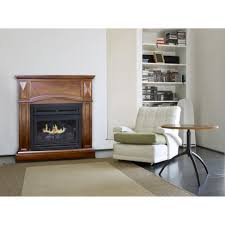 natural gas fireplace ventless. Dual Fuel Vent Free Wall Mount Natural Gas Fireplace Wayfair Ventless