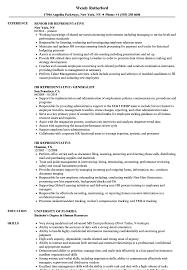 Human Resource Resume Sample Hr Representative Resume Samples Velvet Jobs