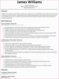 Rn Resume Template New How To Do Professional Examplessing Cv