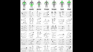 Workout Chart Full Gym Bodyweight Workout Chart At Home Youtube