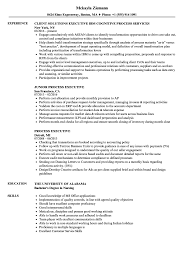 Experienced Resume Sample Process Executive Resume Samples Velvet Jobs 18