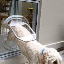 adelaide pet doors other pet services